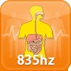 Immune System Function HT